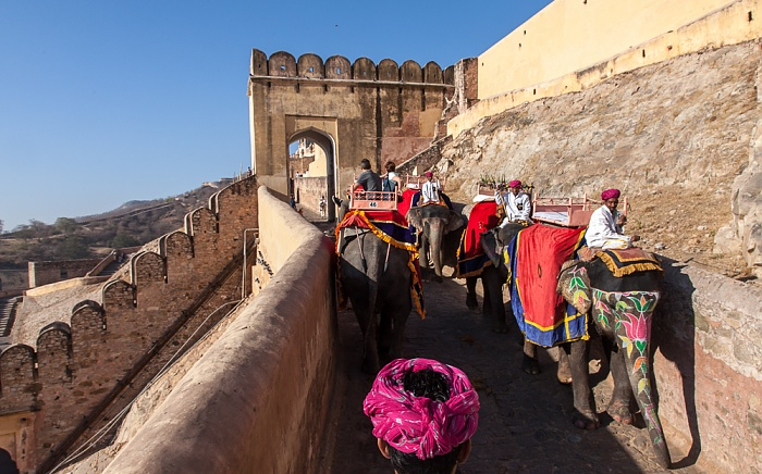 Jaipur Amber Fort: Elefanten