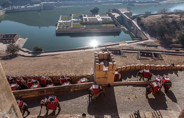 Jaipur Amber Fort: Elefanten beim Aufstieg Kesar Kyari Bagh Maota Lake