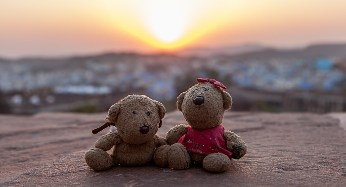 Jodhpur Mehrangarh Fort: Teddy und Teddine
