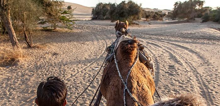 Khuri Wüste Thar (Desert National Park)
