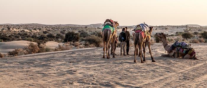 Khuri Wüste Thar (Desert National Park): Kamele, Sanddünen