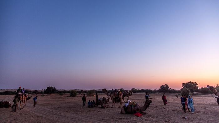 Khuri Wüste Thar (Desert National Park): Kamele