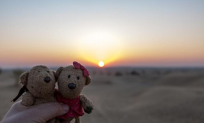 Khuri Wüste Thar (Desert National Park): Sanddünen - Teddy und Teddine