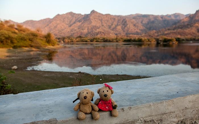 Sadri Teddy und Teddine