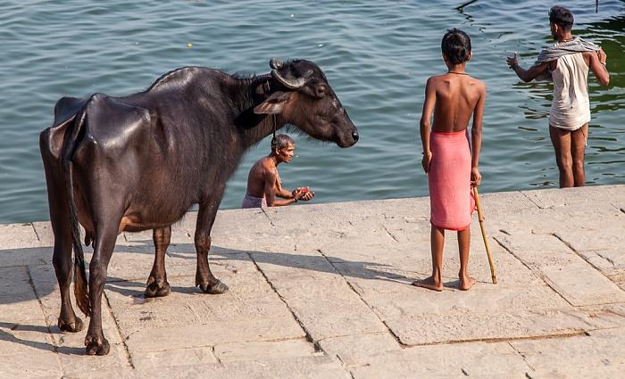 Varanasi Ghats: Manasarovara Ghat - Kuh Ganges