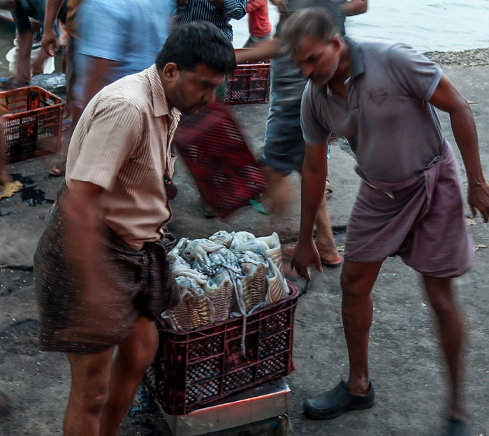 Fort Kochi: Verkauf des frischgefangenen Fischs