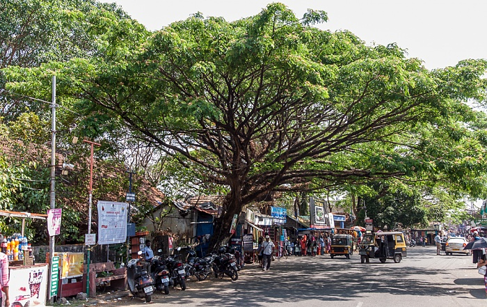 Kochi Mattancherry: Jew Town Road