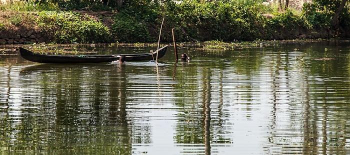 Backwaters Pamba River