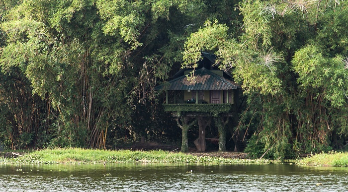 Backwaters Pamba River, Our Land Resort (Karimbavalavu)