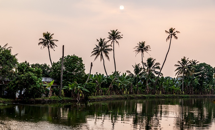 Backwaters Pamba River, Pallathuruthy