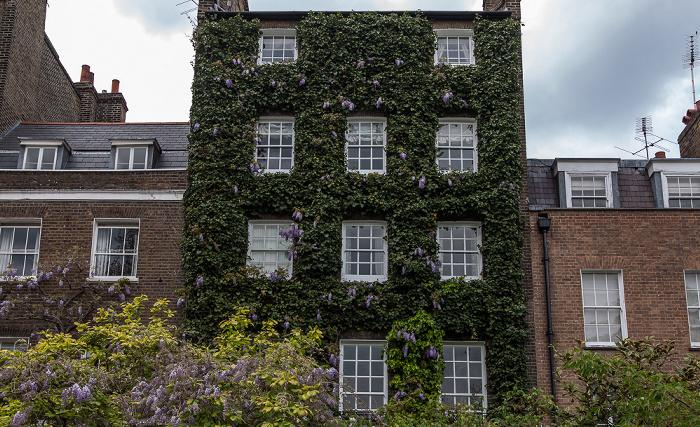 Chelsea: St. Leonard's Terrace London