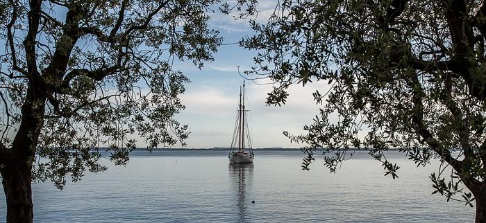 Bardolino Riva Cornicello, Gardasee - Segelboot zwischen Olivenbäumen