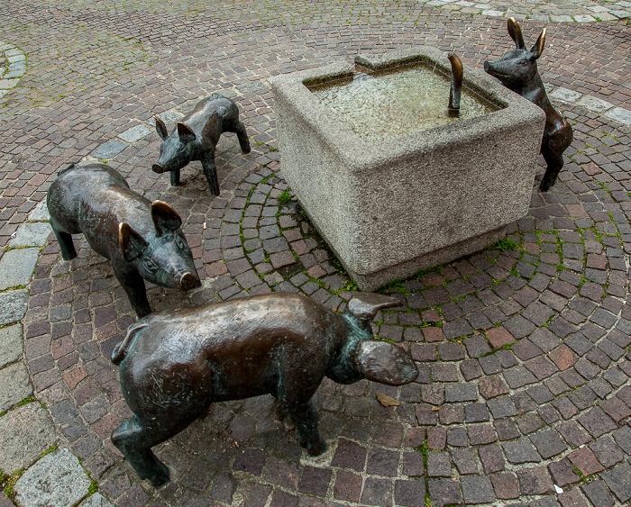 Amberg Altstadt: Viehmarkt - Schweindl-Brunnen (von Manfred Raumberger)