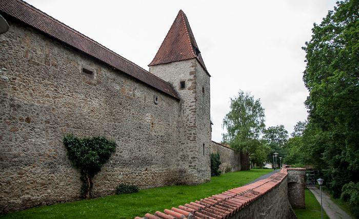 Amberg Altstadt: Stadtmauer