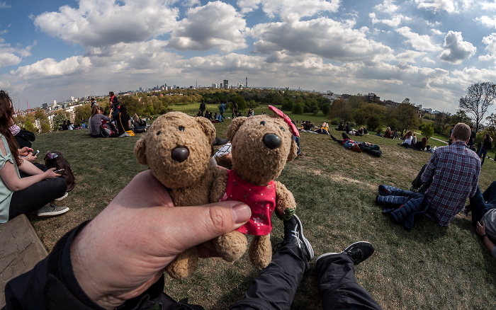 London Primrose Hill: Teddy und Teddine
