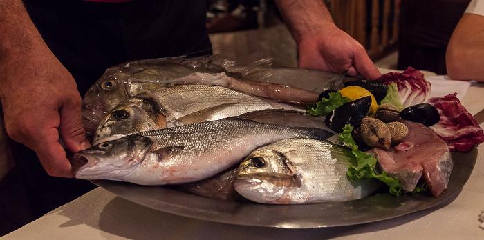 Split Frischer Fisch