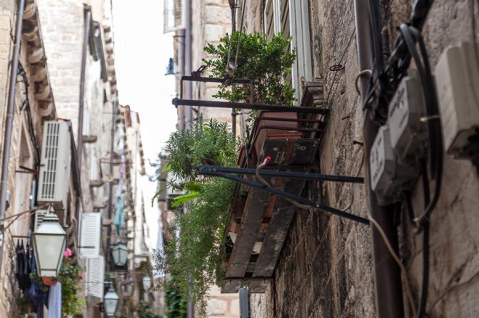Altstadt (Grad): Kunićeva ulica Dubrovnik