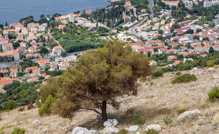 Blick vom Brdo Srđ Dubrovnik