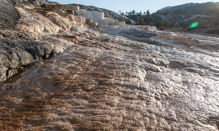 Mammoth Hot Springs: Lower Terraces Area Yellowstone National Park