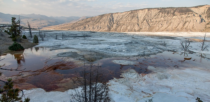 Mammoth Hot Springs: Main Terraces Area Yellowstone National Park