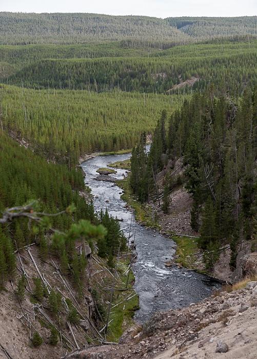 Gibbon Canyon mit Gibbon River Yellowstone National Park