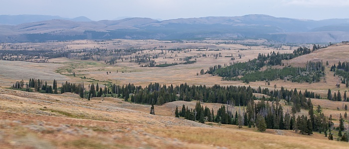 Yellowstone National Park Zwischen Tower Junction und Canyon Village