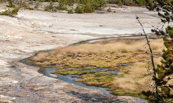 Norris Geyser Basin: Back Basin Yellowstone National Park