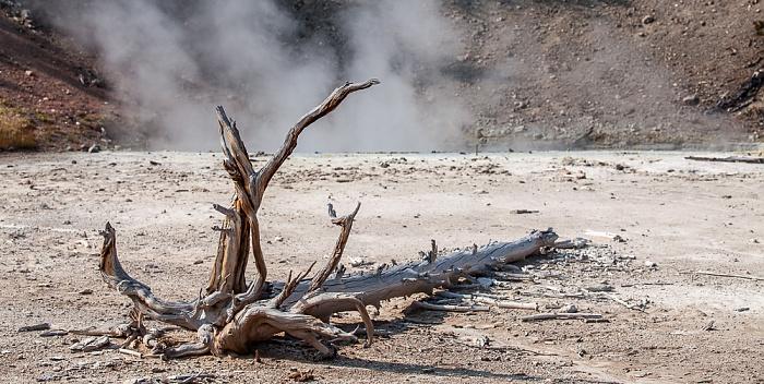 Norris Geyser Basin: Back Basin - Black Hermit Caldron Yellowstone National Park