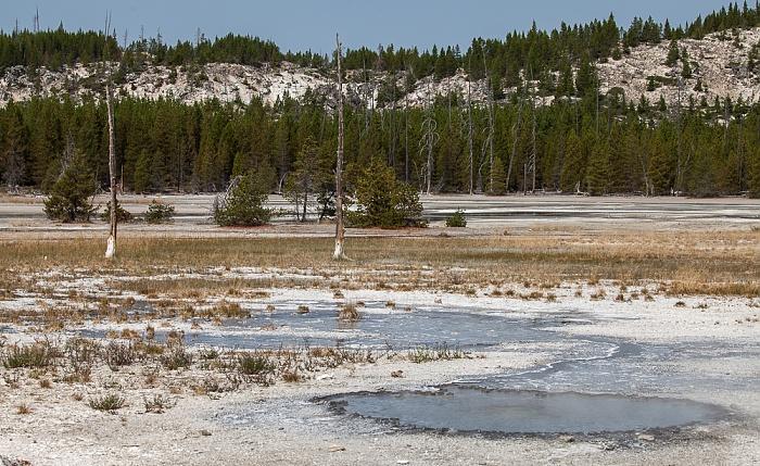 Norris Geyser Basin: Back Basin - Palpitator Spring Yellowstone National Park