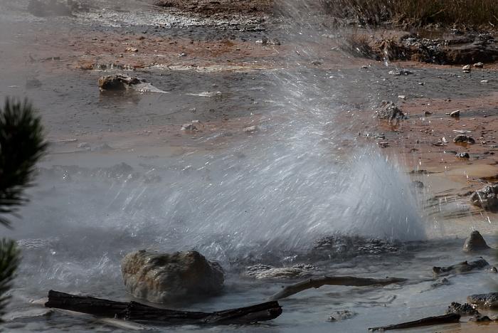 Norris Geyser Basin: Back Basin - Minute Geyser Yellowstone National Park