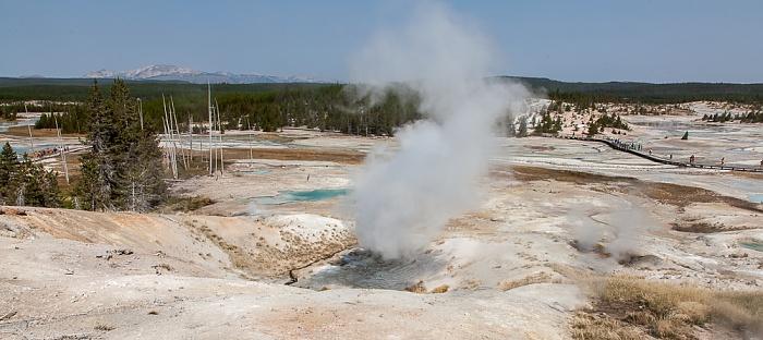 Norris Geyser Basin: Porcelain Basin - Valentine Geyser Yellowstone National Park