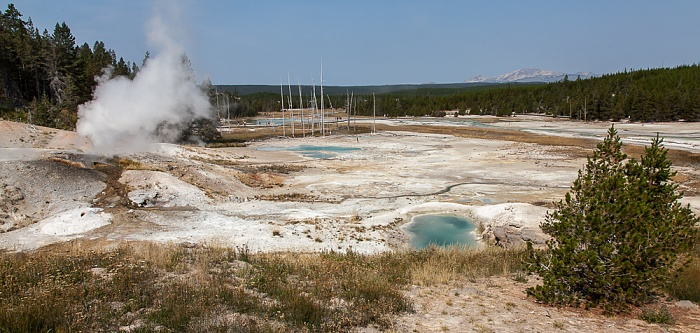 Yellowstone National Park Norris Geyser Basin: Porcelain Basin Jetsam Pool Valentine Geyser
