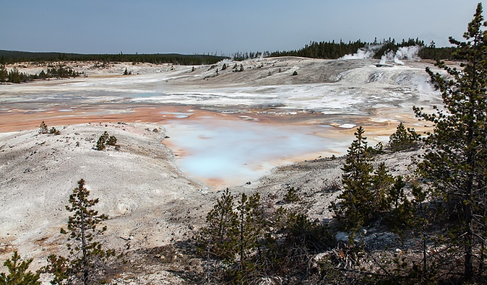 Yellowstone National Park Norris Geyser Basin: Porcelain Basin - Porcelain Springs