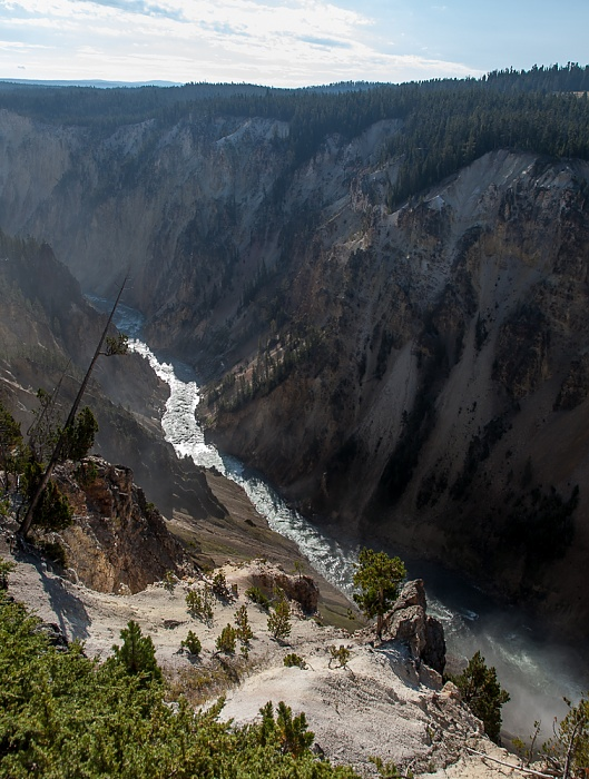 Grand Canyon of the Yellowstone: Yellowstone River Yellowstone National Park