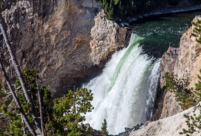 Yellowstone National Park Grand Canyon of the Yellowstone: Yellowstone River, Lower Yellowstone Falls