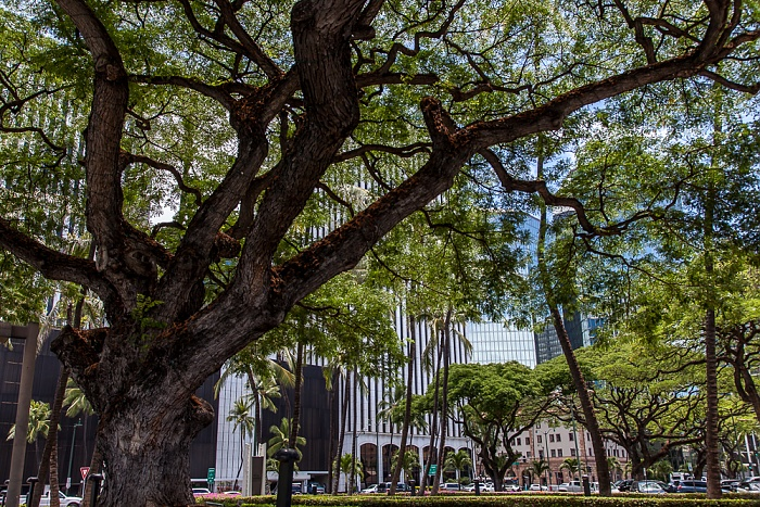Downtown Honolulu: Irwin Park