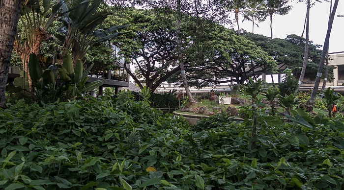 Honolulu Daniel K. Inouye International Airport: Cultural Gardens