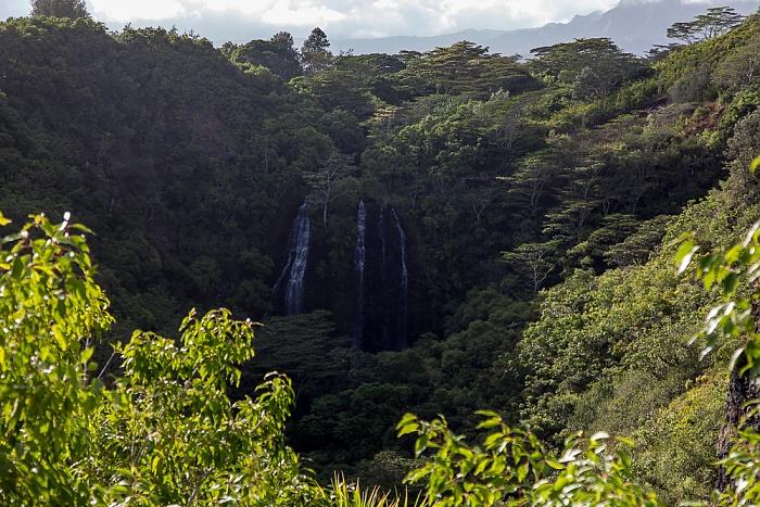 Wailua Homesteads Opaeka'a Falls, Opaeka'a Stream