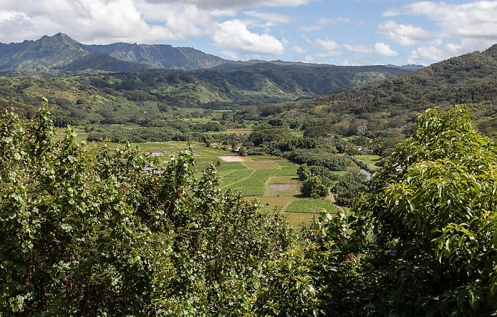 Princeville Blick vom Hanalei Valley Lookout: Hanalei Valley
