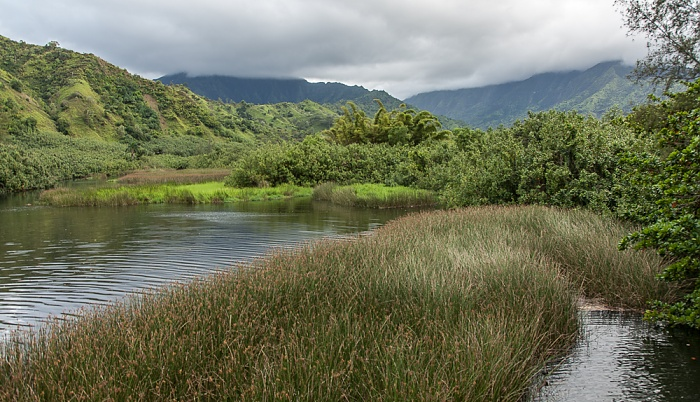 Hanalei Lumaha'i River