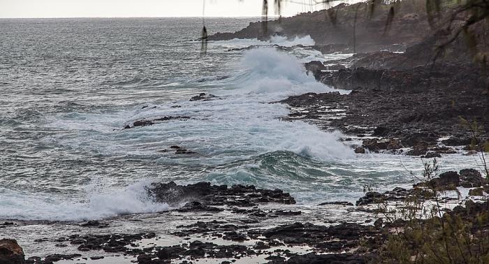 Koloa Pazifik
