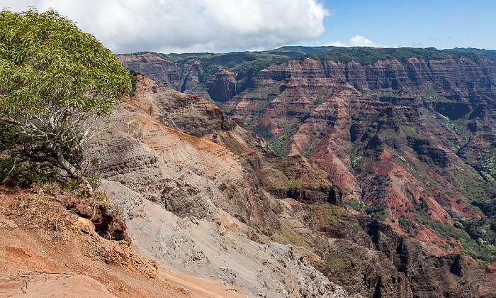Blick vom Waimea Canyon Lookout: Waimea Canyon Waimea Canyon State Park
