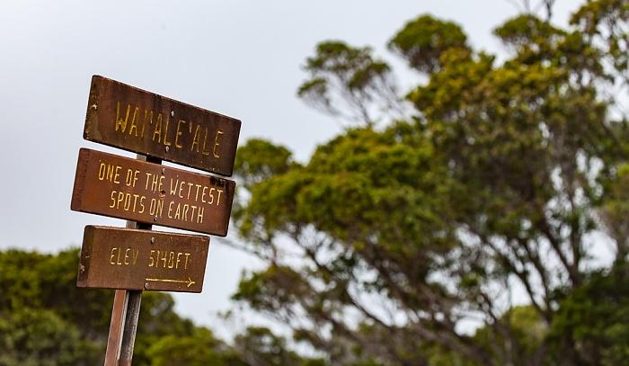 Koke'e State Park Pu'u O Kila Lookout