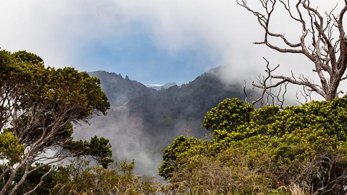 Koke'e State Park Blick vom Pu'u O Kila Lookout:  Napali Coast State Wilderness Park