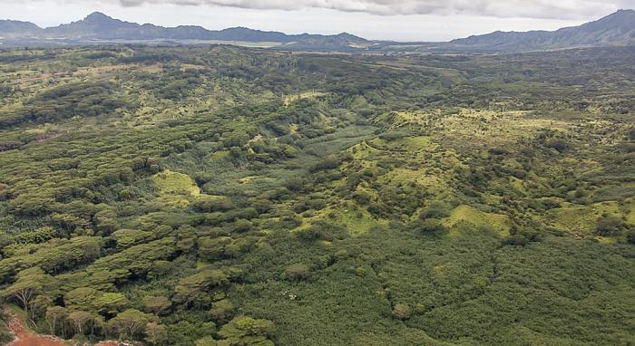 Kauai Blick aus dem Hubschrauber: Lihue-Koloa Forest Reserve Luftbild aerial photo
