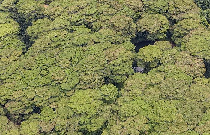 Blick aus dem Hubschrauber: Lihue-Koloa Forest Reserve Kauai
