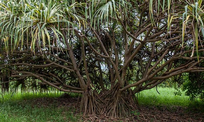Haleakala National Park Kipahulu Section