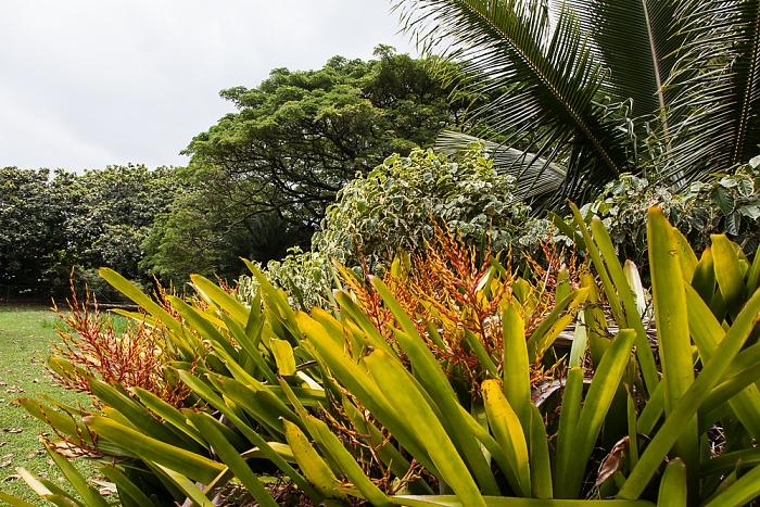 Palapala Ho'omau Church and  Grounds Kipahulu