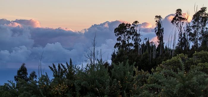 Blick vom Haleakala Highway (1950 m)