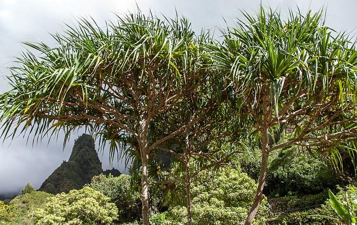 West Maui Mountains: Iao Needle Iao Valley State Park